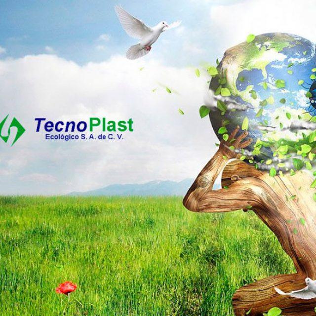 Tecnoplast Ecológico S.A de C.V