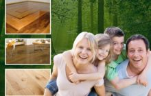 Una campaña con madera ecologista...