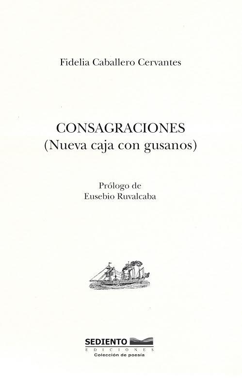 Consagraciones (Nueva caja con gusanos), de Fidelia Caballero