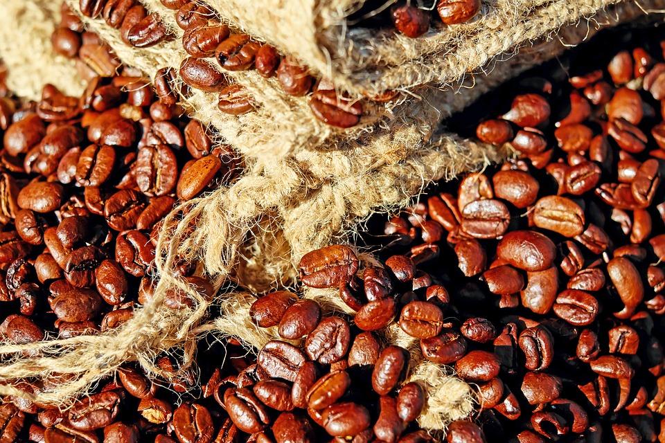 Apoyo y capacitación a cafeticultores: Sedarpa