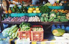 Exhorta Sedarpa a Campesinos a Cultivos Orgánicos